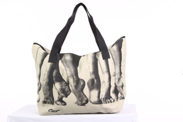 Picture of B30 - BAG - Capezio